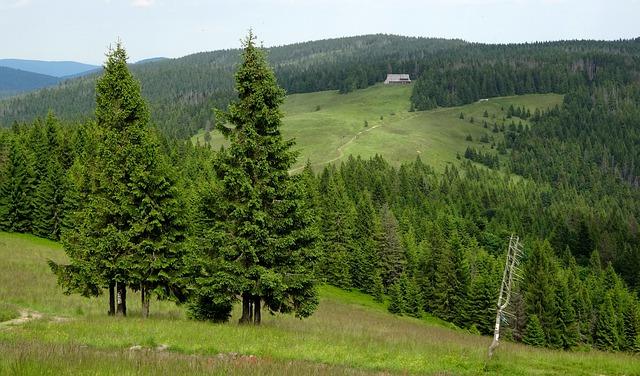 pasmo górskiepołożone w Beskidach Zachodnich